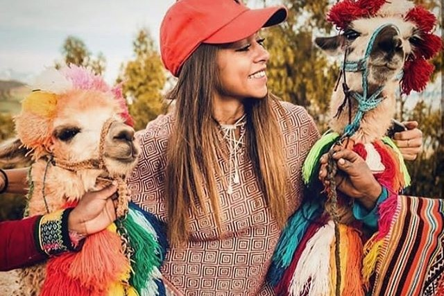 llamas in sacred valley
